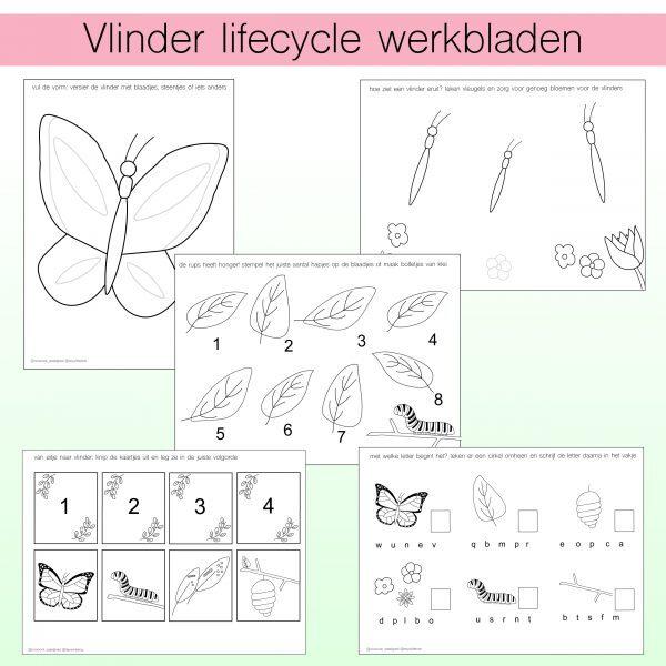 vlinder lifecycle werkbladen printables