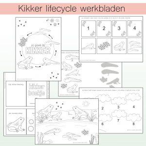 Kikker lifecycle printable