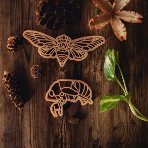 Kinfolk Cicada & Shell Eco Cutter Set